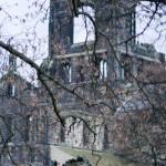 abbey12